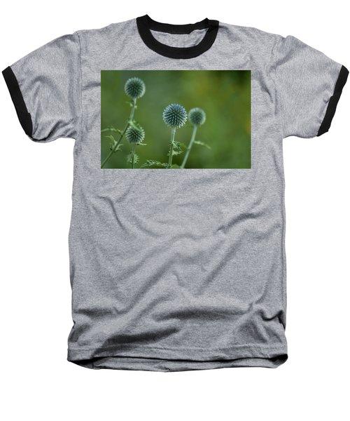 Globe Thistles Echinops Baseball T-Shirt