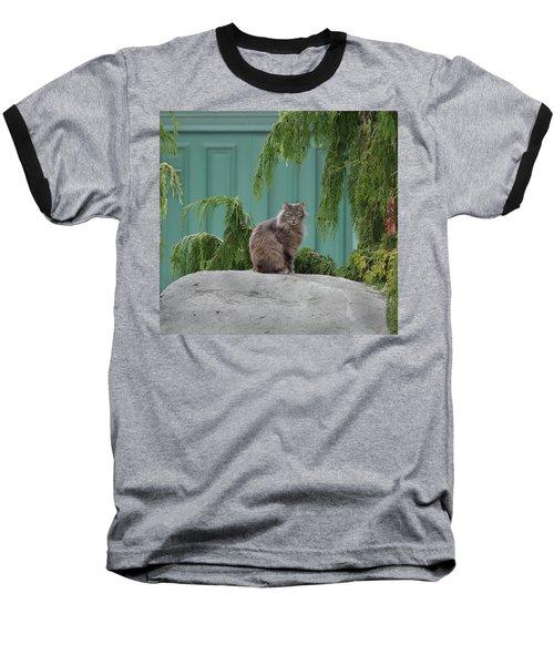 Glorious Cat Baseball T-Shirt