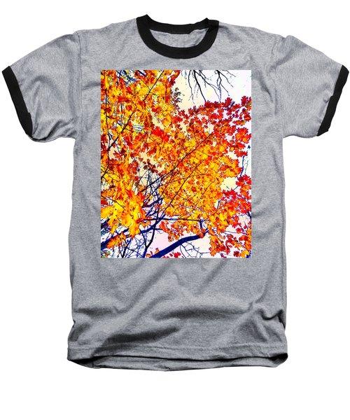 Glorious Foliage Baseball T-Shirt