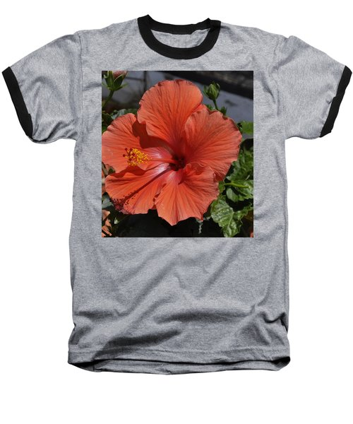 Glorious Hibiscus Baseball T-Shirt