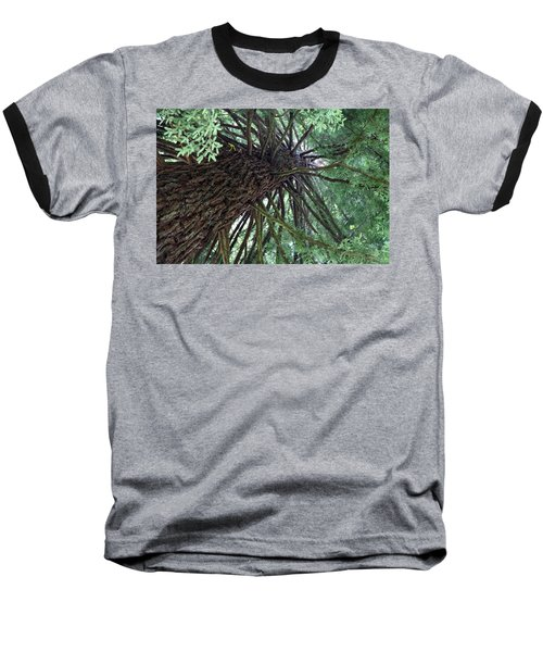 Glorious Tree  Baseball T-Shirt