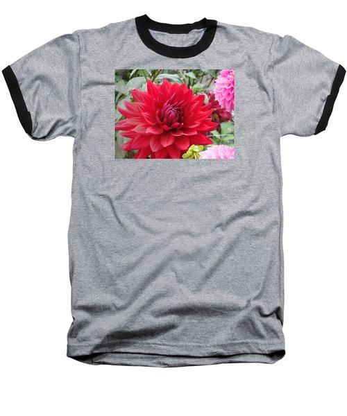 Glory Crimson Dahlia  Baseball T-Shirt