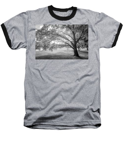 Glowing Tree Baseball T-Shirt