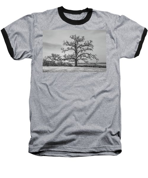 Gnarly Nature Baseball T-Shirt