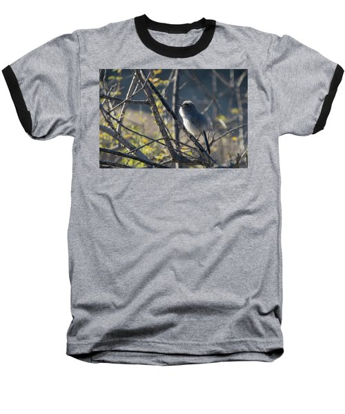 Gnatcatcher Baseball T-Shirt