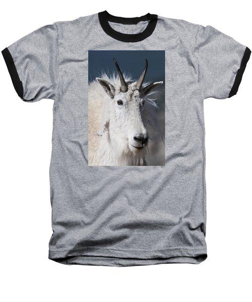 Goat Portrait Baseball T-Shirt