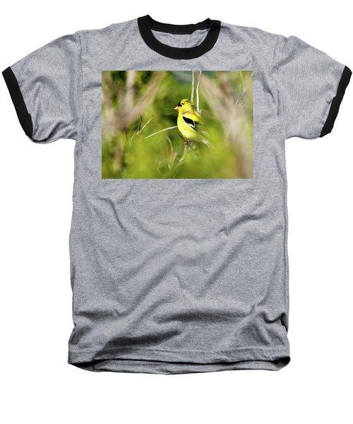 Gold Finch Baseball T-Shirt