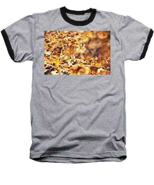 Gold Rush Baseball T-Shirt