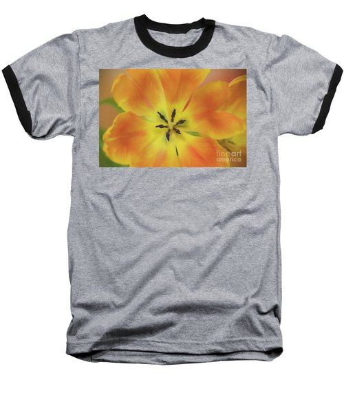Gold Tulip Explosion Baseball T-Shirt