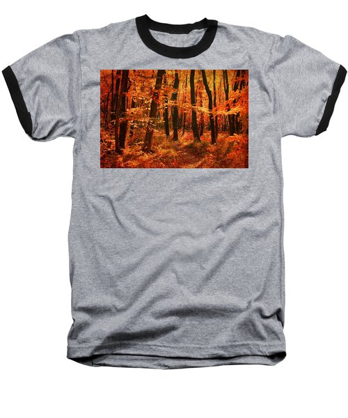 Golden Autumn Forest Baseball T-Shirt by Gabriella Weninger - David