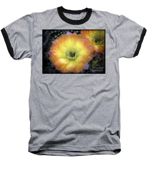 Golden Cactus Bloom Baseball T-Shirt by Saija  Lehtonen