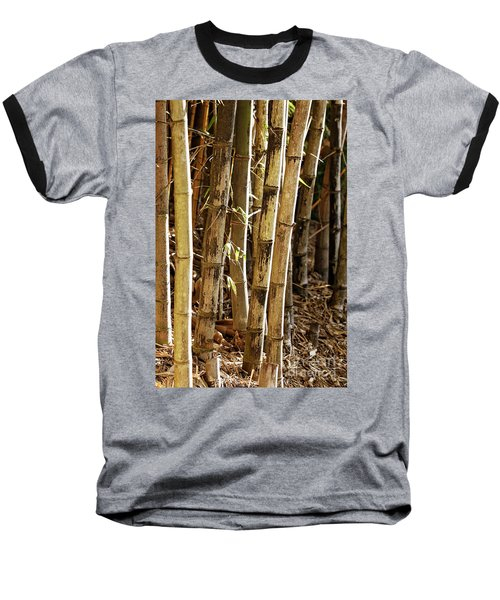 Baseball T-Shirt featuring the photograph Golden Canes by Linda Lees