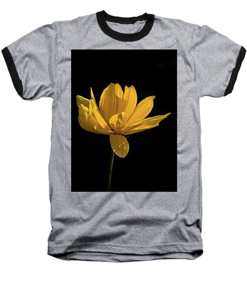 Golden Coreopsis Baseball T-Shirt by Jacqi Elmslie