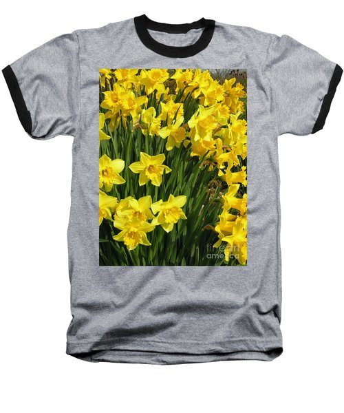 Golden Daffodils Baseball T-Shirt by Phil Banks
