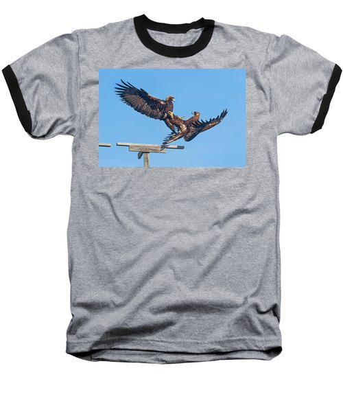 Golden Eagle Courtship Baseball T-Shirt