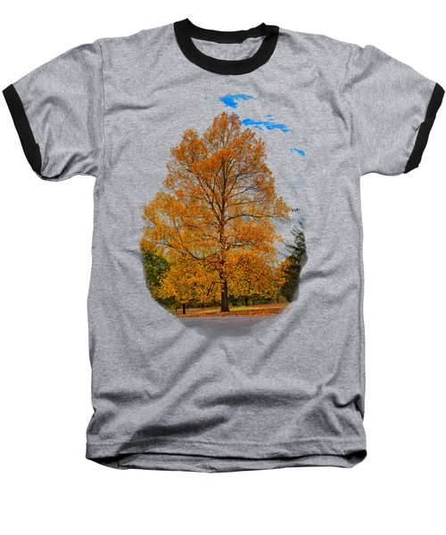 Golden Fall Colors 2 Baseball T-Shirt