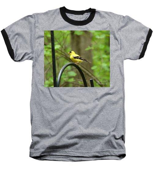 Golden Finch Baseball T-Shirt
