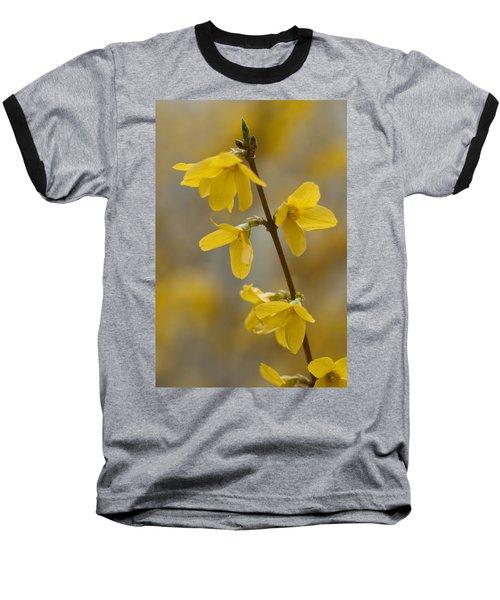 Golden Forsythia Baseball T-Shirt
