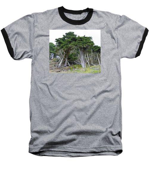 Golden Gate Sentinels Baseball T-Shirt