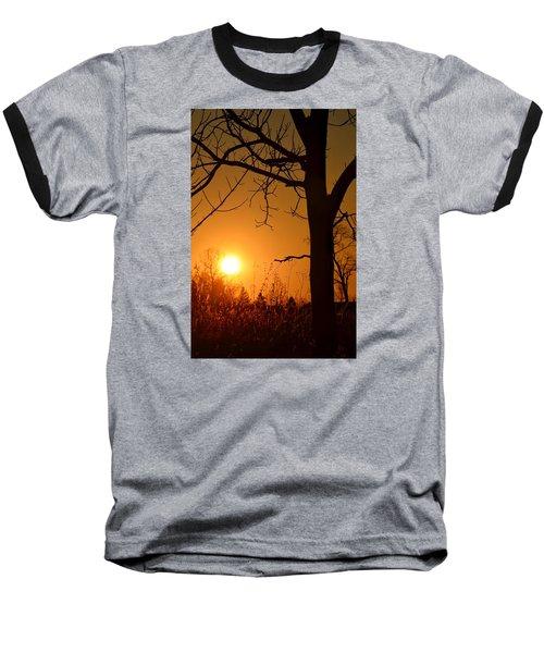 Golden Hour Daydreams Baseball T-Shirt by Nikki McInnes