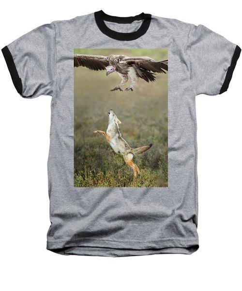 Golden Jackal, Canis Aureus, Leaping At Vulture Baseball T-Shirt