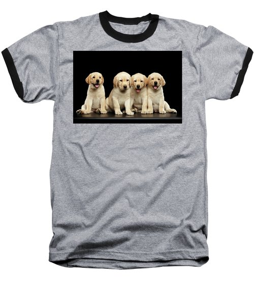 Golden Labrador Retriever Puppies Isolated On Black Background Baseball T-Shirt
