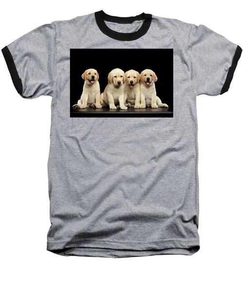Golden Labrador Retriever Puppies Isolated On Black Background Baseball T-Shirt