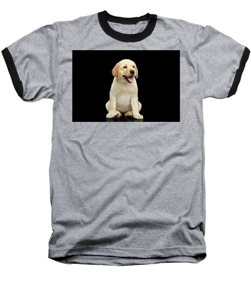 Golden Labrador Retriever Puppy Isolated On Black Background Baseball T-Shirt