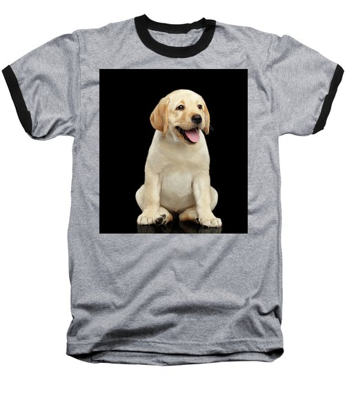 Golden Labrador Retriever Puppy Isolated On Black Background Baseball T-Shirt