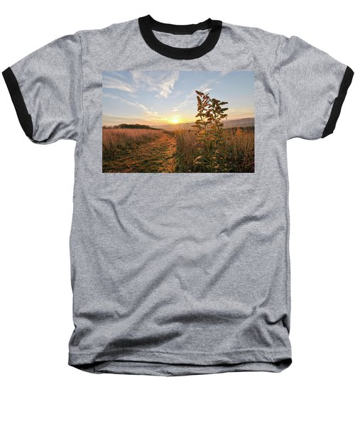 Golden Landscape Baseball T-Shirt