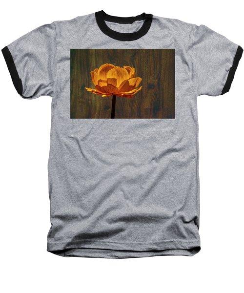 Golden Orange #g0 Baseball T-Shirt by Leif Sohlman
