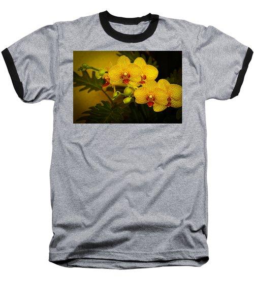 Golden Orchids Baseball T-Shirt