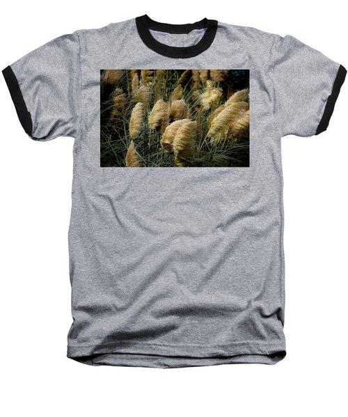 Golden Pampas In The Wind Baseball T-Shirt
