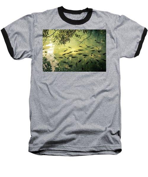 Golden Pond With Fish Baseball T-Shirt by Menachem Ganon