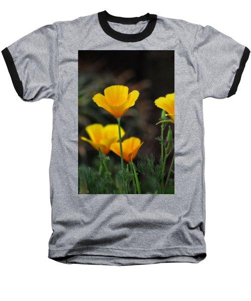 Golden Poppies  Baseball T-Shirt