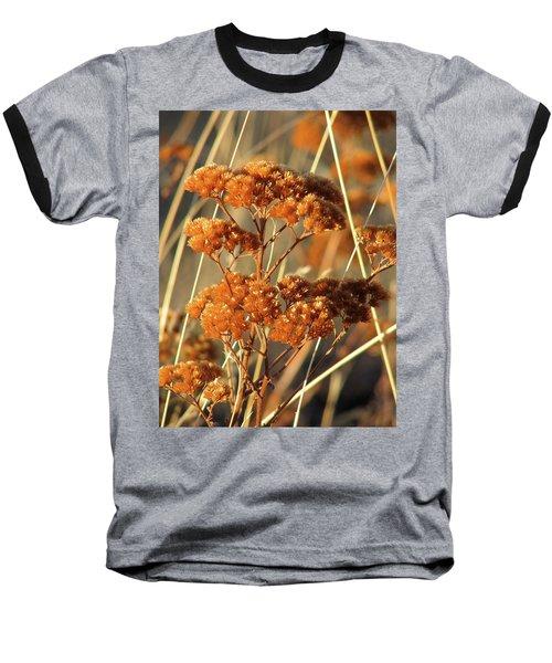 Golden Reach Baseball T-Shirt