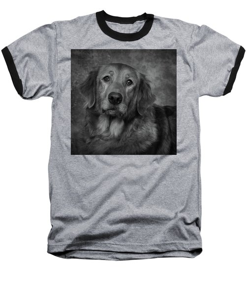 Golden Retriever In Black And White Baseball T-Shirt by Greg Mimbs