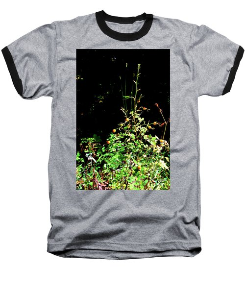 Golden Rose Hips Baseball T-Shirt