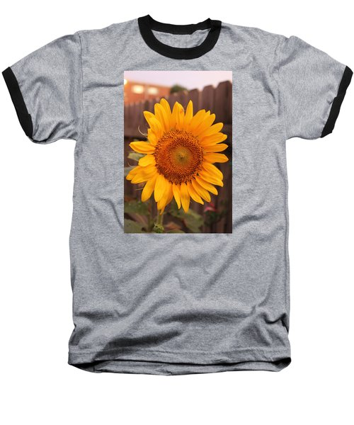 Golden Sunflower Closeup Baseball T-Shirt