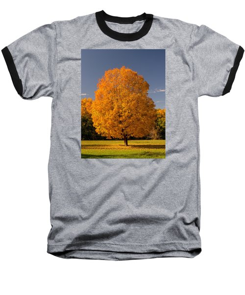 Golden Tree Of Autumn Baseball T-Shirt by Gary Slawsky
