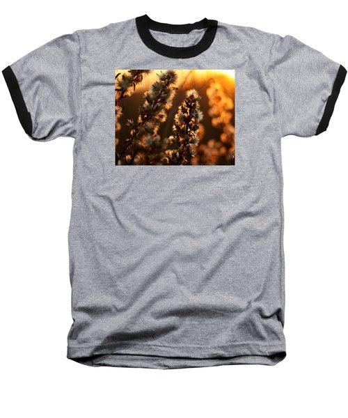 Goldenrod At Sunset Baseball T-Shirt