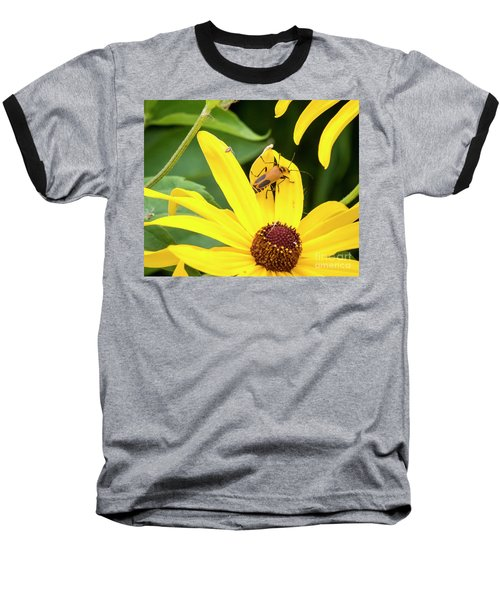 Baseball T-Shirt featuring the photograph Goldenrod Soldier Beetle by Ricky L Jones