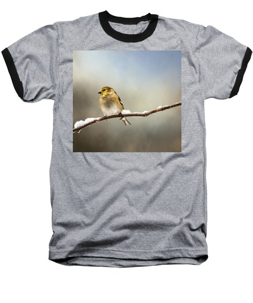 Goldfinch After A Spring Snow Storm Baseball T-Shirt