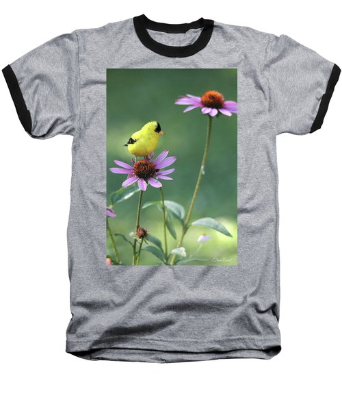 Goldfinch On A Coneflower Baseball T-Shirt