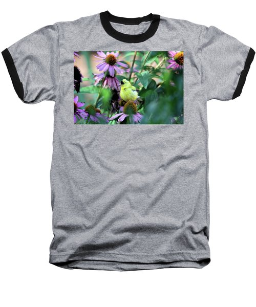 Goldfinch On Coneflowers Baseball T-Shirt