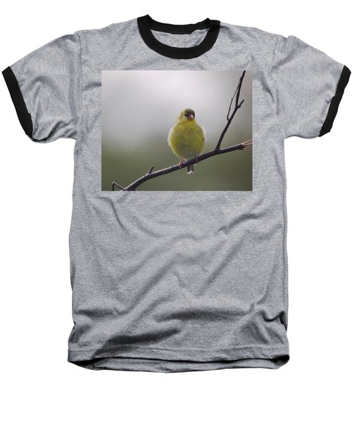 Baseball T-Shirt featuring the photograph Goldfinch Puffball by Susan Capuano
