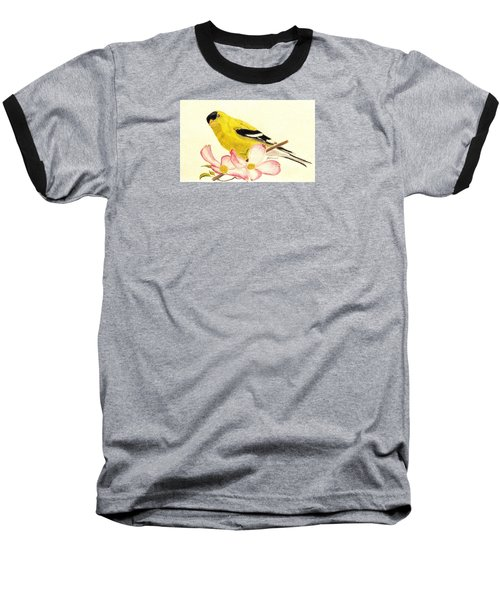 Goldfinch Spring Baseball T-Shirt by Angela Davies