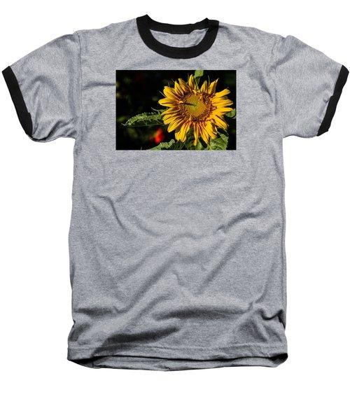 Good Morning Baseball T-Shirt by Alana Thrower