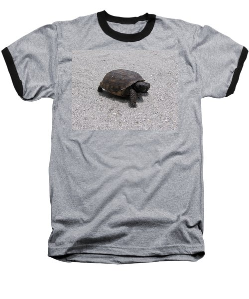 Gopher Tortoise  Baseball T-Shirt