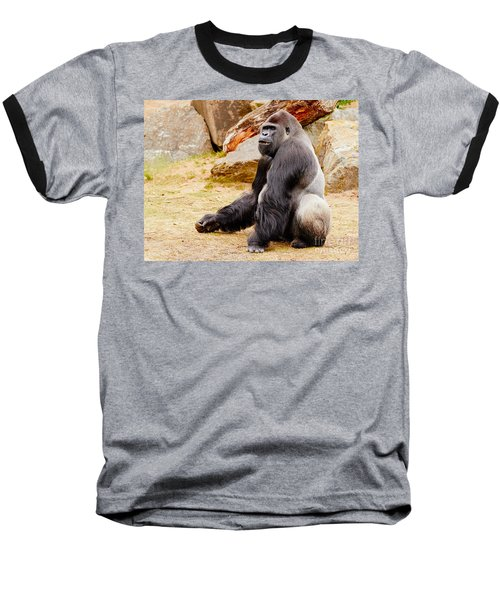 Gorilla Sitting Upright Baseball T-Shirt